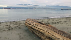 English Bay Vancouver, Morning dolly shot stock video