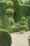 English boxwood garden. English boxwoods garden design, Norfolk, England Stock Photos