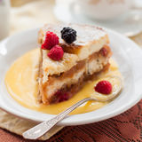 English Bread and Butter Pudding with Apples and Cranberries Royalty Free Stock Photo