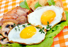 English breakfast - egg, toast,  bacon and salad. Royalty Free Stock Photo