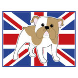 English Bulldog Flag Stock Image