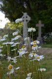 English churchyard. Royalty Free Stock Image