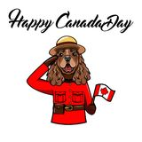 English Cocker Spaniel Dog. Canadian flag. Canada day card. Royal Canadian Mounted Police. Spaniel portrait. Vector. English Cocker Spaniel Dog. Canadian flag Royalty Free Stock Images