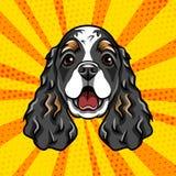 English Cocker Spaniel dog portrait. Dog muzzle, head, face. Colorful background. Vector. English Cocker Spaniel dog portrait. Dog muzzle, head, face. Colorful Royalty Free Stock Photos