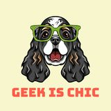 English Cocker Spaniel geek. Dog in smart glasses. Geek is chic text. Vector illustration. Cartoon style stock illustration