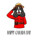 English cocker spaniel. Royal Canadian Mounted Police. Happy Canada day greeting card design. Vector. English cocker spaniel. Royal Canadian Mounted Police Stock Photo