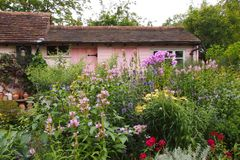 English cottage garden. A colourful english cottage garden below Warwick Castle in England Royalty Free Stock Photography