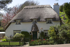 English country cottage. Thatched white country cottage Stock Photos