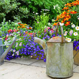 English country garden. A beautiful English country garden with a rusty old watering can for added charm royalty free stock photography