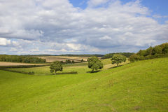 English country landscape Stock Image