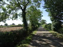 English country lane northamptonshire Stock Photography