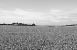 English country panorama in Salisbury in black and white Stock Photo