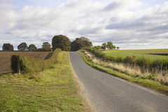 English country road Stock Image