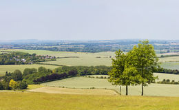 English countryside. Views from a hill over the dunstable downs in england, uk Royalty Free Stock Image