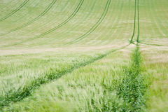 English countryside agricultural landscape Stock Photo
