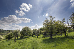 English countryside in the chiltern valley Stock Photo