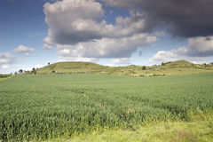 English countryside in the chiltern valley Stock Photography
