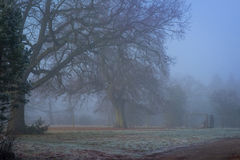 English countryside in fog Royalty Free Stock Photos