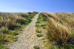 English countryside: footpath, grass, blue sky. English countryside landscape taken along the footpath of the Yorkshire Three Peaks Challenge - grass, drystone Royalty Free Stock Photography