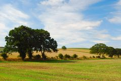 English countryside landscape. With trees, fields, blue sky, clouds Royalty Free Stock Images