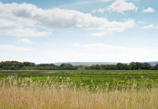 English countryside landscape. Scenic countryside landscape with cane and cloudscape Stock Image
