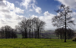 English Countryside in March. The rolling hills of Cranborne Chase in Dorset Royalty Free Stock Photo