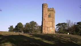English Countryside near London. Early spring beech wood. Copy space background. Leith Hill Tower. In the evening. stock video footage