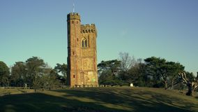 English Countryside near London. Early spring beech wood. Copy space background. Leith Hill Tower on North Downs. stock footage