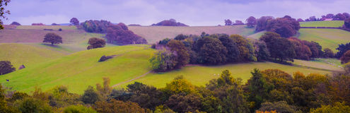 English Countryside Stock Photography