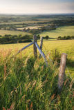 English countryside rural landscape in Summer sunset light Royalty Free Stock Photography