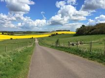 English countryside in spring Royalty Free Stock Photos