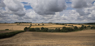 English countryside. In summer time Royalty Free Stock Photography