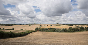 English countryside. In summer time Stock Image