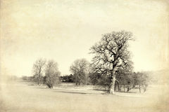 English countryside vintage. The English countryside, vintage style with textures Royalty Free Stock Images