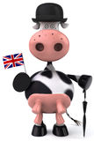 English cow royalty free illustration
