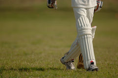 English Cricket. Cricket match stock photos