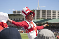 English cricket fan celebrate the ashes Royalty Free Stock Photos