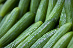 English Cucumbers In Market Stock Images