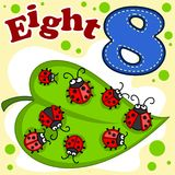 English digit eight. A cartoon illustration  for children with figures of eight and eight ladybirds on a green leaf.er Royalty Free Stock Photo
