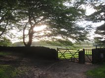English fence and gate Royalty Free Stock Photos