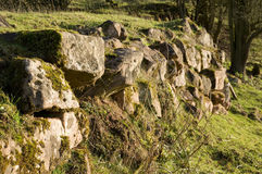 English field boundary wall Royalty Free Stock Image