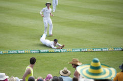 English fielder picking ball from boundary Stock Image