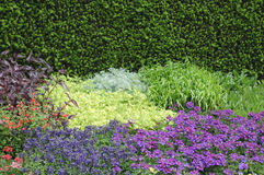 English flower beds. In Garden, Norfolk, England Royalty Free Stock Photo
