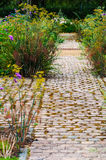 English flower and foliage garden and footpath way Stock Image