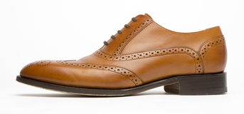 English Full Brogue Brown Shoe Profile Stock Photography