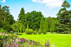 English garden. A lovely english garden in full summer colour royalty free stock image
