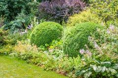 English garden. Theme garden at Hamilton Gardens, New Zealand Royalty Free Stock Images