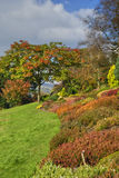 English garden in Autumn Stock Image