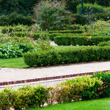 English garden and footpath square Royalty Free Stock Images