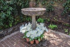 English garden fountain Royalty Free Stock Photo
